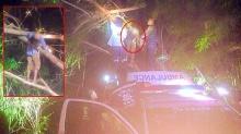 ญาติตามหาป้าวัย 64 สุดท้ายเจอเป็นศพคอหักอยู่บนต้นกระถิน
