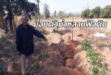 ตาวัย 84 ปีสำนึกผิดมอบตัวฆ่าหลานฝังดิน