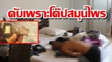 สาวช็อก!แฟนออสซี่ดับคาห้องพัก สงสัยปมโด๊ปสมุนไพรไทยชนิดนี้