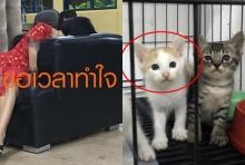 เจอคนรักสัตว์ดักรอเต็มสน.'ดีเจสาว'ถูกกล่าวหาฆ่าแมว ขอเวลาทำใจ