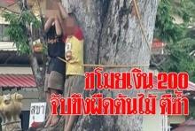 ชาวบ้าน งง จับเด็กขโมยเงินได้ ขึงผืดต้นไม้ประจาน ก่อนจับลงมาฟาดซ้ำ!