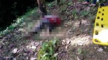 มุ่ย สวนเลา มือปืนเมืองคอน แหกคุก ล้างแค้น ยิงโหดเจาะหัวหนุ่มสวนยาง