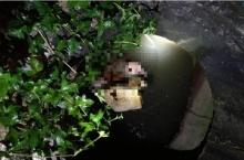 ผงะสาวถูกฆ่าปาดคอเหี้ยม โยนศพยัดท่อน้ำอำพราง