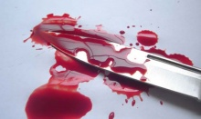 แก๊งฆ่าผัวฝรั่ง-เมียไทยเศรษฐีแพร่ เปิดปากพี่ชายจ้างเอง