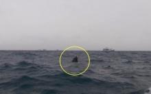 คลื่นซัดเรือล่ม! ใกล้เกาะนางยวน ครอบครัวชาวสวิสสวมชูชีพรอดตายหวุดหวิด