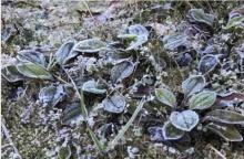 อีสานอุณหภูมิลดอีก2-4องศาฯ ใต้ระวังน้ำป่าแม้ฝนลด