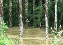น้ำยังท่วมนราฯ3อ.สูงสุด60ซม.คาด2วันแห้ง