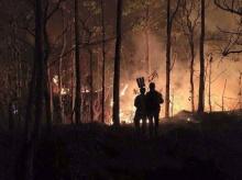 เจ้าหน้าที่ดับไฟไหม้ป่าบนดอยสุเทพได้แล้ว!!!