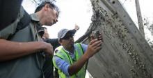 มาเลเซียยืนยันซากที่พบที่ปากพนังไม่ใช่ MH370