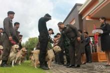 ครั้งแรกของประเทศ ติดยศสุนัขตำรวจตรี 111 นาย