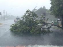 อุตุฯ เตือนเหนือ-อีสาน ระวังพายุลมแรง