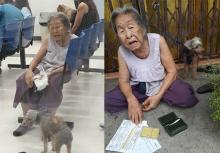 สุดประทับใจ!! คุณยายวัย 90 พาน้องหมาไปหาหมอ แม้ตัวเองจะเดินไม่ค่อยไหวก็ตาม