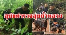 สุนัขตำรวจมาแล้ว!! ผบ.ตร.จักรทิพย์ สวมชุดสนาม เดินลุยป่า สำรวจทุกโพรงถ้ำ ช่วย 13 ชีวิต