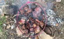 รุมฆ่าหมาจรจัด!! 4 คนงานชาวพม่า แล่เนื้อหมาย่างกินแกล้มเหล้า สุดสะเทือนใจ!!