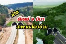 """ดีเดย์ 9 มีนาคม รมว.คมนาคมเปิดถนนเชื่อมป่ามรดกโลก """"อุโมงค์คนใช้สัญจร สัตว์ป่าใช้ข้าม"""" แรกในไทยเชื่อมเขาใหญ่-ทับลาน"""