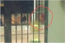 ภาพจากเรือนจำ!แม่จ่านิวเพลียล้มตัวลงนอน ก่อนส่งศาลทหารฝากขัง
