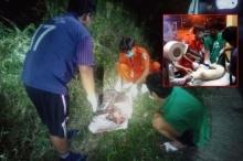 สลด ยัดสุนัขใส่กระสอบตีด้วยไม้ติดตะปูเลือดท่วมทิ้งข้างทาง กู้ภัยเร่งช่วย