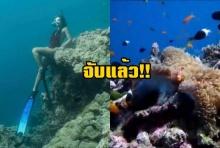 โดนจับแล้ว นักท่องเที่ยวโพสท่านั่งทับบนปะการัง อ้างรู้เท่าไม่ถึงการณ์