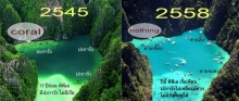 เปรียบเทียบแนวปะการังเกาะพีพีเล ในช่วง 13 ปี ถูกขยี้ไม่เหลือซาก