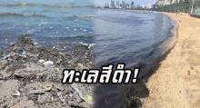 แล้วใครจะไปเที่ยว! หาดพัทยาใต้ขยะล้นหาด น้ำทะเลสกปรกจนเป็นสีดำ!