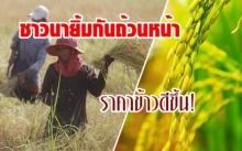 ปีทองข้าวหอมมะลิไทย ราคาแพงสุดในรอบ 5 ปี
