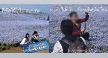 งามหน้า!เผยคนไทยเหยียบสวนดอกไม้ถ่ายเซลฟี่ที่ญี่ปุ่น ชาวเน็ตรุมจวกยับ