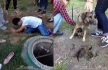 รปภ.มหาลัยโหด!! จับลูกหมาฝังทั้งเป็น แต่โชคดีที่คนเหล่านี้ไปเจอ!!