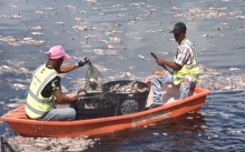 คุณพระ!!! ปลานับหมื่นลอยตายเป็นแพ คาดเกิดจากอากาศร้อน-น้ำเน่าเสีย