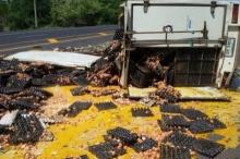 งานนี้เละ!!! รถบรรทุกไข่ไก่พลิกคว่ำ เทกระจาดกระจายเต็มถนน!!