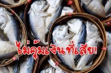 เชื่อไหมว่าเรากำลังกินอาหารทะเลที่แย่ลง แต่แพงขึ้นกว่าเดิม!! รู้ไหมเพราะอะไร?