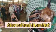 ล็อกใส่กุญแจมือ รวบชาวบ้านฆ่าลิงแสมตัดหัว แล่เนื้อมาทำกิน เจ้าตัวอ้างเพิ่งทำครั้งแรก!