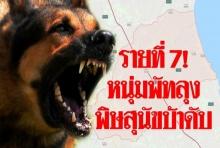 ชายวัย 39 ชาวพัทลุง ตายจากพิษสุนัขบ้า เป็นรายที่ 7 ของประเทศ