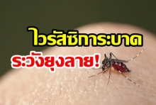 เตือนระวัง! ไวรัสซิกา ระบาดหนัก-ระวังยุงลาย