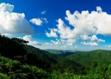 พิธีกรชื่อดัง-อดีตอธิบดี งานเข้า!! เจอสอบรุกที่ป่าเขาใหญ่!!