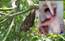 หนุ่มถูกผึ้งนับพันรุมต่อย หลังลองของ ไปตีเพื่อนมันตาย ผลเป็นไงมาดูกัน !