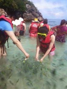 จวกยับ ! นักท่องเทียวไปเกาะไข่ ใช้ตาข่ายจับปลาทะเล-ให้อาหาร