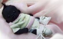 อ.วิทยาศาสตร์ จุฬาฯ ฟันธง! เด็กทารกตัวดำที่สุดในโลก แค่ของปลอม!
