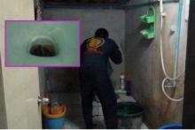 อีกรายแล้ว!สาวใหญ่สยองงูเห่าตัวเป็นๆ โผล่โถส้วมห้องน้ำในบ้าน!