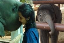โซไรดา ย้ำยังไม่ปิดมูลนิธิเพื่อนช้าง รับน้อยใจไม่ค่อยได้รับการช่วยเหลือจากภาครัฐ