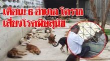 โรคพิษสุนัขบ้าระบาด 6 อำเภอ จ.โคราช จนท.สาธารณสุข เร่งฉีดวัคซีนป้องกันทุกชุมชน