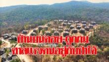 บ้านบนดอย ถูกกม. ศาลแจง คนอยู่กับป่าได้ไม่ตัดต้นไม้-แค่ขุดล้อม ป้อมนัด3ฝ่ายถก9เมย. กลุ่มค้านหยุดเดินแล้ว