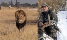 รุมสาปแช่งเศรษฐีมะกันจ้างพรานฆ่าสิงโต อ้างไม่รู้เป็นตัวขวัญใจชาวซิมบับเว