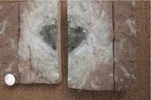 ตะลึงทั้งโลก!! พบแผ่นหินประหลาดในเหมืองหินปูน ว่ากันว่ามันเป็นของต่างดาว??