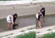 แห่ชื่นชมกระเทยน้ำใจงาม!! ช่วยหมาพิการขึ้นจากคลองระบายน้ำ