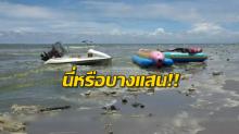 หาดบางแสนเกิด 'แพลงก์ตอนบลูม' น้ำทะเลเปลี่ยนเป็นสีเขียว เศษขยะลอยเกลื่อน!!