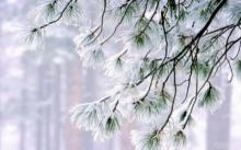 เชียงรายหวั่นปีนี้หนาวหนักเตรียมงบ 20 ล้านบาทช่วยเหลือ
