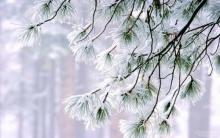 เหนือ-อีสาน อากาศหนาวเย็น อุณหภูมิต่ำกว่า 16 องศา