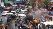 หวิดวุ่น! พา'ช้าง' เล่น สงกรานต์ ....