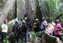 ตะลึง! พบต้นมันช้างยักษ์ขนาด40คนโอบ เชื่อเป็นต้นไม้ศักดิ์สิทธิ์