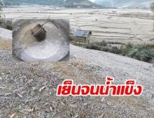 ยะเยือกหนัก ลาว อุณหภูมิติดลบ น้ำในกาละมังกลายเป็นน้ำแข็ง ทุ่งนาขาวโพลน